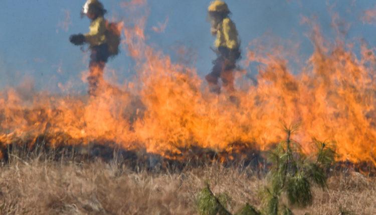 カリフォルニア山火事のイメージ