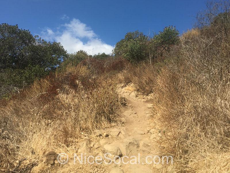 上り坂@Laguna Ridge Trail